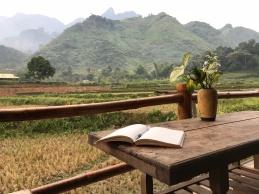 Morning views in Du Gia